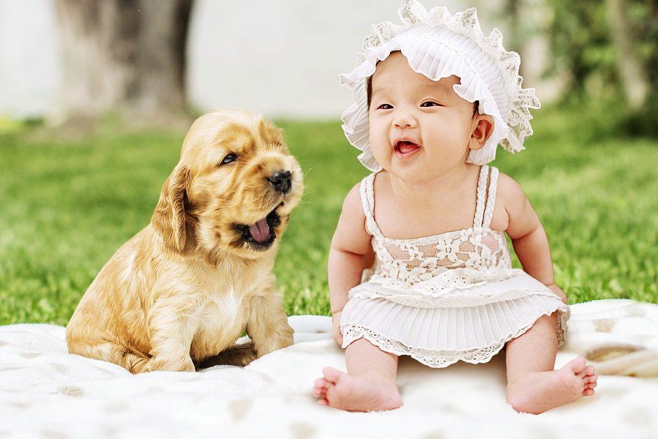 Welchen psychologischen Einfluss haben Familienhunde auf Kinder?